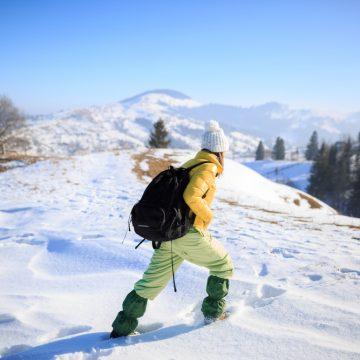 snow survival myths